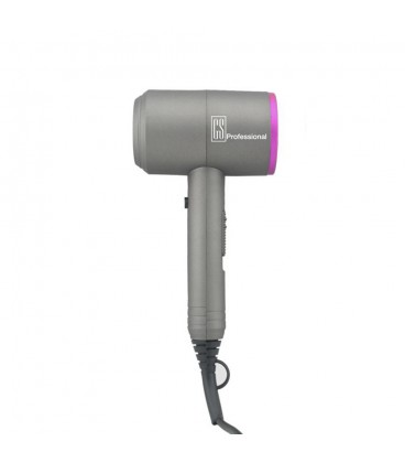 GS Professional D Dryer